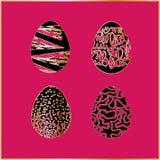 jajka ustawiający Fotografia Royalty Free