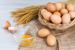 Jajka w drewnianym koszu obrazy royalty free