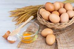 Jajka w drewnianym koszu fotografia royalty free