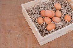 Jajka w drewnianym pudełku Fotografia Royalty Free