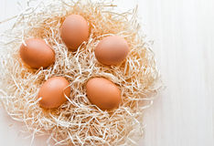 Jajka w gniazdeczku Fotografia Royalty Free