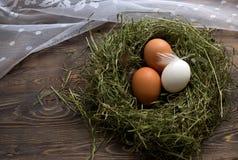 Jajka w gniazdowych kurczaków jajkach Gniazdeczko na drewnianym tle Zdjęcia Royalty Free