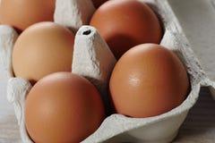 Jajka w jajecznym panelu Zdjęcia Royalty Free