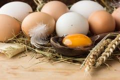 Jajka w koszu Odgórny widok jajka w pucharze drewniani jajka pucharów jajka Kurczaka jajko Kurni jajka koszykowi Fotografia Royalty Free