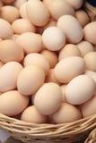 Jajka w koszu, zamykają up obraz stock