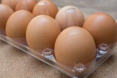 Jajka w pakunku Obraz Stock