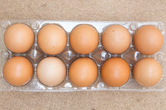 Jajka w pakunku Fotografia Stock
