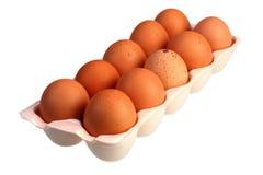 Jajka w pakunku na białym tle z ścinek ścieżką Zdjęcia Royalty Free