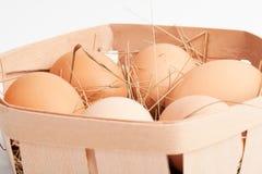 Jajka w pudełku zdjęcie royalty free