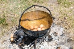 Jajka w starym kruszcowym kotle Obraz Stock