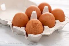 Jajka w tacy Obraz Stock