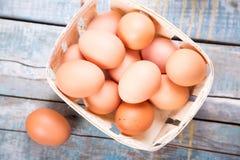 Jajka w zbiorniku Zdjęcie Stock