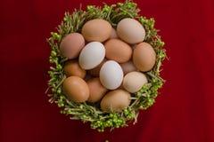 Jajka w zielonym kosza zakończeniu Zdjęcia Royalty Free