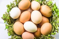 Jajka w zielonym kosza zakończeniu Zdjęcia Stock