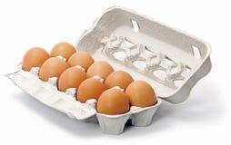 jajka świezi Obrazy Stock