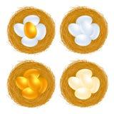 jajka złoci Zdjęcia Royalty Free