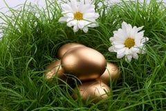 jajka złoci Zdjęcie Stock