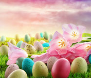Jajka z różowymi tulipanami w trawie Zdjęcia Stock
