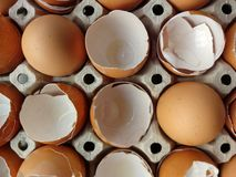 Jajko i eggshell zdjęcia stock