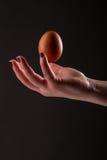 Jajko i ręka Zdjęcia Royalty Free