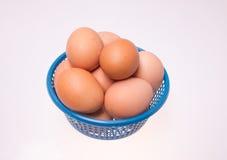 Jajko na Błękitnym koszu Zdjęcia Royalty Free