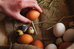 Jajko na białym tle minimalista zdjęcie stock