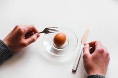 Jajko na białym tle minimalista obrazy stock