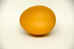 Jajko na białym tle Zdjęcie Stock