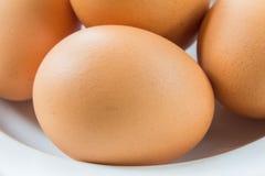 Jajko na naczyniu Obrazy Royalty Free