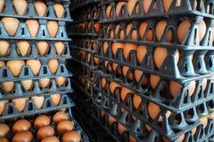 jajko na paczce, surowi kurczaków jajka dla gotować w klingeryt desce przy sto Fotografia Royalty Free