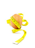 Jajko odizolowywający na białym tle Obraz Royalty Free