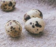 jajko przepiórka trzy Zdjęcie Stock