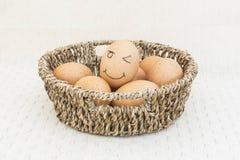 Jajko w brown koszu Zdjęcie Stock