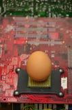 Jajko w elektronika karty Zaczyna up pojęcia zdjęcie stock