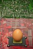Jajko w elektronika karty Zaczyna up pojęcia zdjęcie royalty free