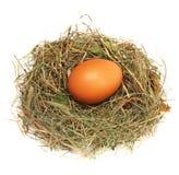 Jajko w gniazdeczku Obrazy Stock