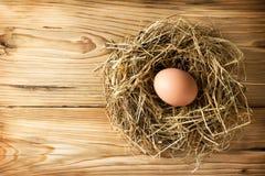 Jajko w gniazdeczku Fotografia Royalty Free