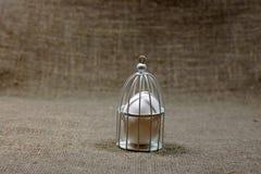 Jajko w klatce na ciemnozielonym szorstkim bawełnianym tekstury sztuki pojęciu Fotografia Royalty Free