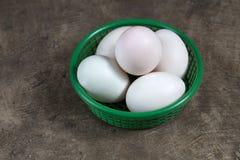 Jajko w koszu Fotografia Stock