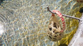 Jajko w koszu gotuje się w gorących wiosnach przy sankamphaeng Zdjęcie Stock