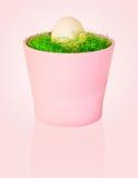 Jajko w pucharze Zdjęcia Royalty Free