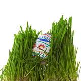 Jajko w trawie Fotografia Royalty Free