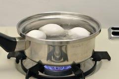 jajko wrzący garnek Obrazy Stock