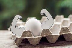 Jajko z mięśniami, pojęcie jajeczna proteina, bawi się odżywianie, dieta dla mięśniowego budynku obraz stock