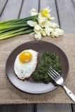 Jajko z szpinakiem dla zdrowego śniadania Obraz Royalty Free