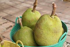 Jak fruit Stock Images