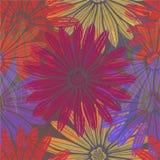 jakaś kolory istnieją deseniową kwiat wersję cztery Fotografia Royalty Free