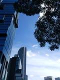 Jakarta-Gebäudeansicht in die Stadt Blauer Himmel des Morgens und viele Wolken mit Baum als dem Vordergrund stockfotos