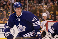 Jake Gardiner Toronto Maple Leafs Stock Image