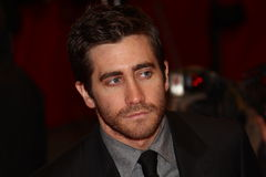 Jake Gyllenhaal Royalty Free Stock Images